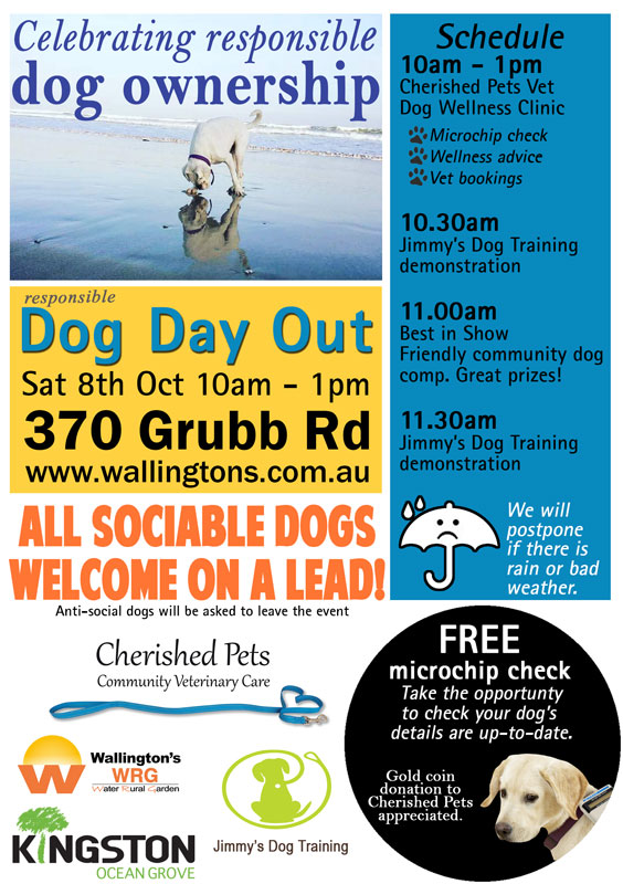 Wallingtons-WRG-Dog-Day-Out